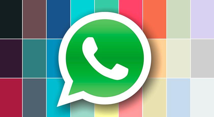 WhatsApp mejora la reproducción de video en YouTube, Facebook e Instagram. Noticias en tiempo real