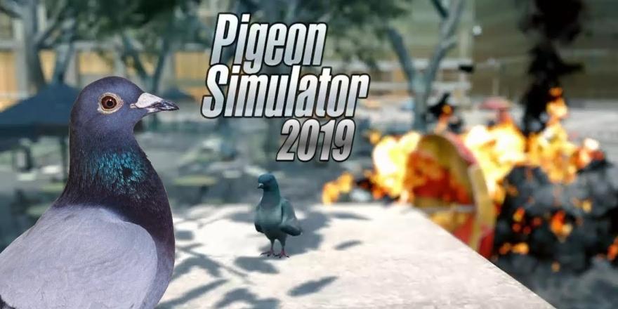 ¿El juego del siglo?: Conoce el simulador de palomas. Noticias en tiempo real