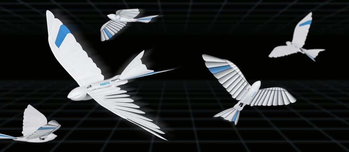 pájaros biónicos-posdata -digital-press