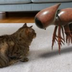 asi-puedes-ver-animales-rarisimos-en-tu-casa-con-ayuda-de-google-arts