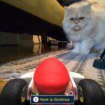 videos-los-gatos-estan-odiando-mario-kart-live-home-circuit